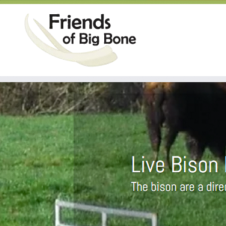 Friends of Big Bone Website